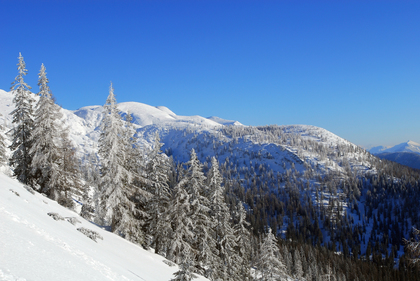 Winter im Sengsengebirge